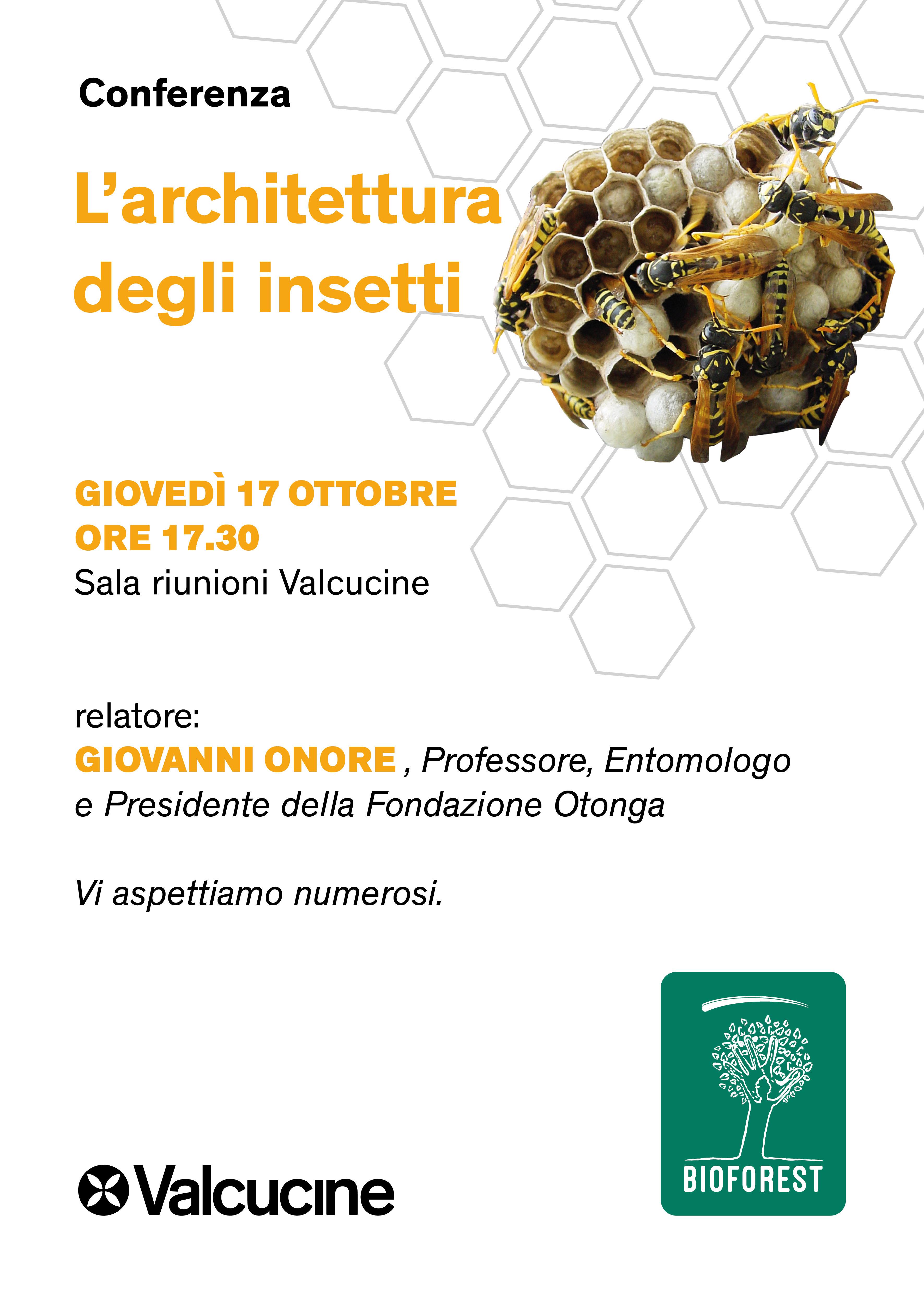invito_conferenza_insetti